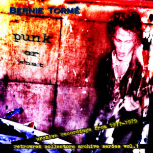 Bernie Torme - Punk or What