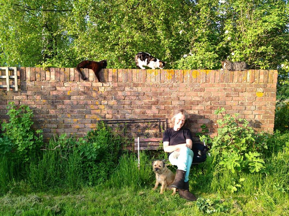 Benire Torme in his garden. Cats dogs and all.